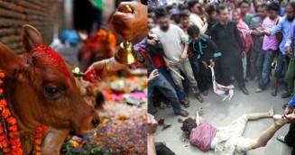 ভারতে মুসলিম হত্যার ধুম, কেন?