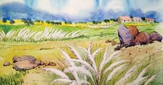 সাদা কাশফুল : মজনু মিয়া'র গল্প