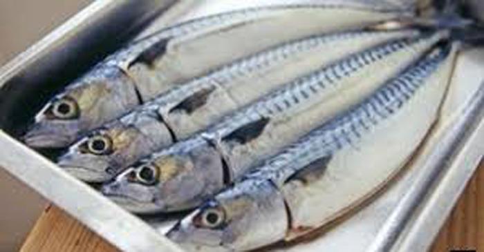 তৈলাক্ত মাছ বাতের ঝুঁকি কমায়